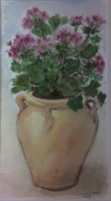 Geranium in Terracotta Pot - SOLD