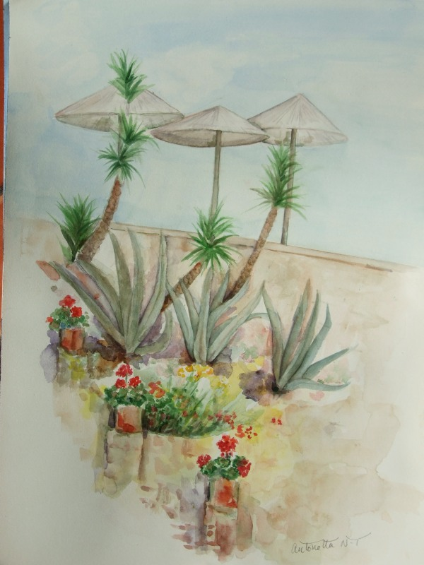 Bodrum Princess 'Aloe vera'